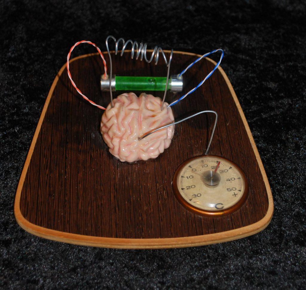 H brain science
